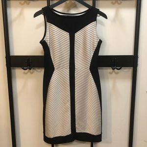 Dressbarn Collection Fitted Sheath Dress